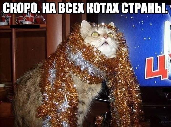 ru1Ksw0l9f8.jpg